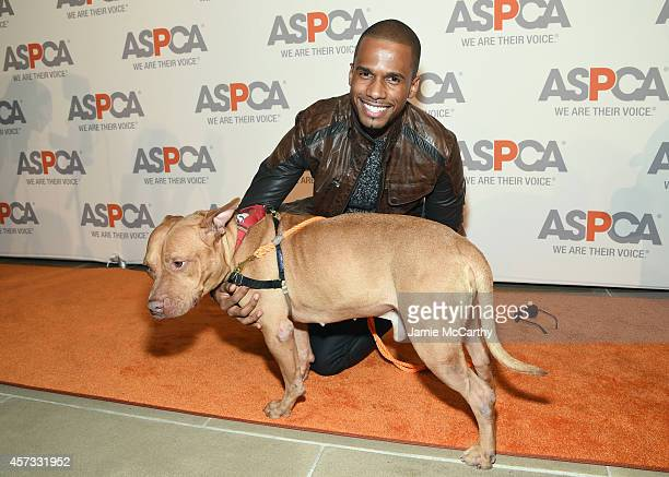 Eric West poses with Orlando at ASPCA Young Friends Benefit at IAC Building on October 16 2014 in New York City