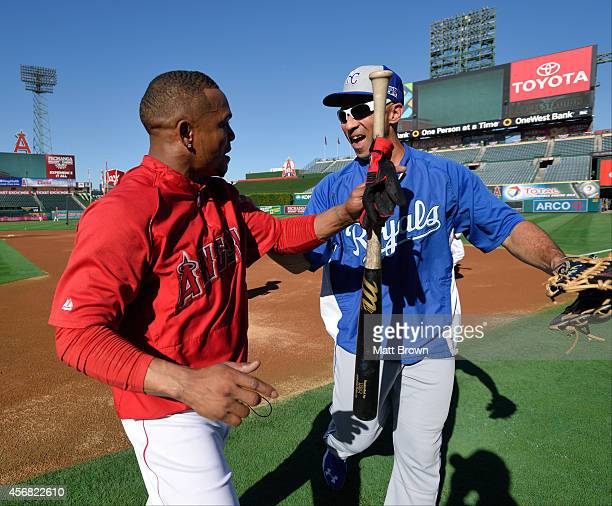 Erick Aybar of the Los Angeles Angels of Anaheim and Raul Ibanez of the Kansas City Royals laugh and hug prior to Game One of the American League...