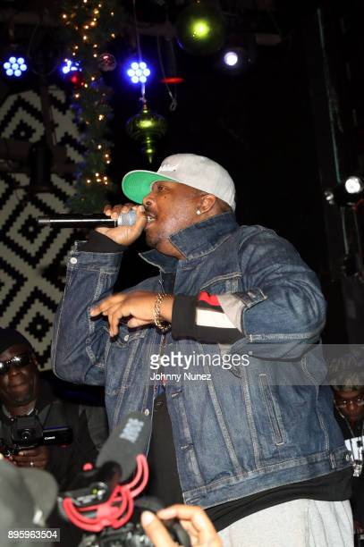 Erick Sermon performs at the 13 Sins Album Release Party at SOB's on December 19 2017 in New York City