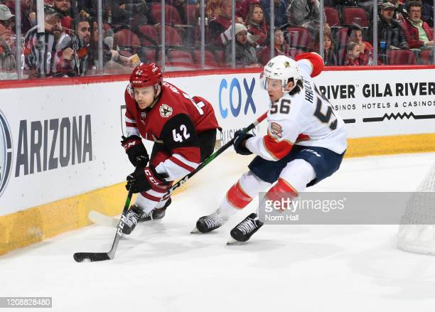 Erik Haula of the Florida Panthers battles for a loose puck with Aaron Ness of the Arizona Coyotes at Gila River Arena on February 25 2020 in...
