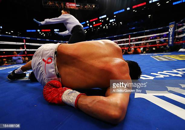 Erik Morales is knocked out by Danny Garcia in the fourth round during their WBC/WBA junior welterweight title at the Barclays Center on October 20...