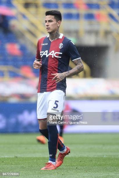 Erik Pulgar of Bologna FC looks on during the serie A match between Bologna FC and Hellas Verona FC at Stadio Renato Dall'Ara on April 15 2018 in...