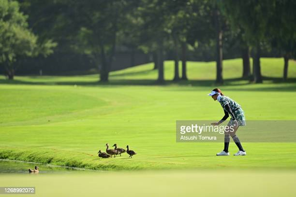 Erika Hara of Japan guides ducks to the pond on the 2nd hole during the first round of the Nitori Ladies Golf Tournament at the Otaru Country Club on...