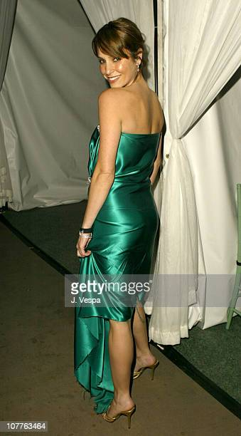 Erin Lokitz during EMI 2004 GRAMMY Party at Los Angeles County Museum of Art in Los Angeles California United States