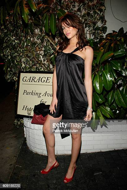 Erin Naas attends Nicolas Berggruen Dinner at Chateau Marmont on February 21 2007 in Hollywood CA
