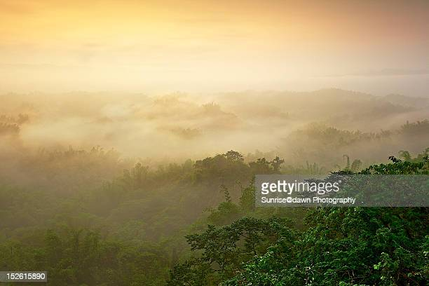 erliao on misty - utc−10:00 stock pictures, royalty-free photos & images