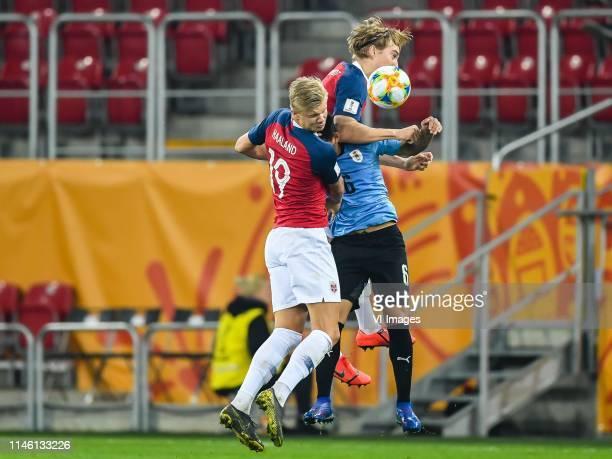 Erling Haland of Norway U20, Kristian Thorstvedt of Norway U20, Maximiliano Araujo of Uruguay U20 during the FIFA U-20 World Cup Poland 2019 group C...