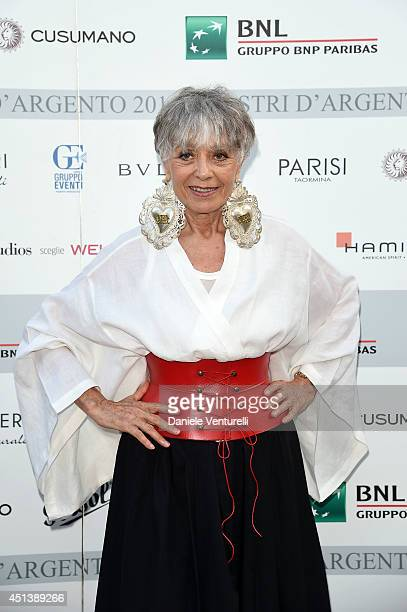 Erminia Ferrari attends the Nastri D'Argento Awards 2014 Cocktail on June 28 2014 in Taormina Italy