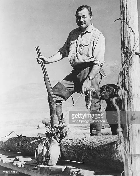 Ernest Hemingway Posing with Shotgun and Labrador