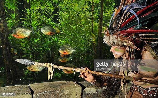 Ernesto Marinhos, a native of Charala, an isolated village in Colombia, poses for pictures in front of a tank of piranha fish as he performs a unique...