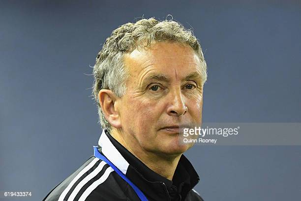 Ernie Merrick the coach of the Phoenix looks on during the round four ALeague match between the Melbourne Victory and Wellington Phoenix at Etihad...