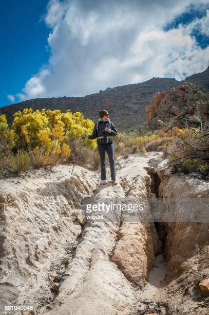 erosion evaluation - soil erosion stock photos and pictures
