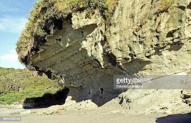 Erosion nick wave cut notch at base of cliff Base of Farewell Spit Golden Bay Nelson New Zealand