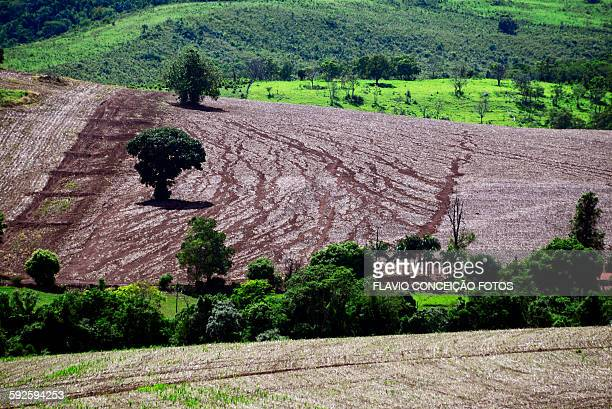 erosion soil red brazil - soil erosion stock photos and pictures