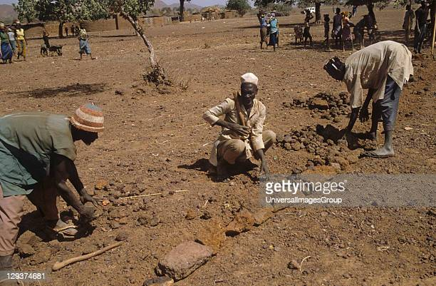 ErosionBurkina Faso West Africa Yatenga Province Kalsaka Village Every Monday and Tuesday in the dry season stone lines are built to prevent erosion...