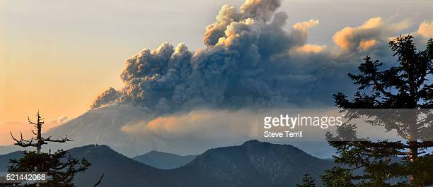 eruption of mt. st. helens - mount st. helens stock pictures, royalty-free photos & images