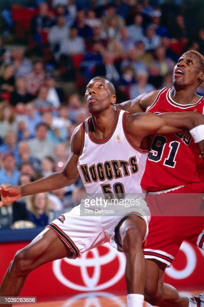 Ervin Johnson of the Denver Nuggets is seen on guard during the game against Dennis Rodman of the Chicago Bulls on November 21 1996 at the McNichols...