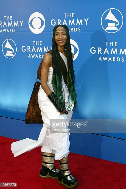 Erykah Badu arrives at the 44th Annual Grammy Awards at the Staples Center in Los Angeles Ca Feb 27 2002