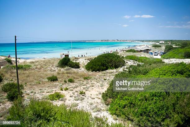 Es Trenc beach with sand dunes at Mallorca Island on June 27 2016 in Ses Covetes Spain