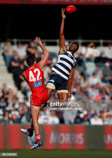 Esava Ratugolea of the Cats and Robbie Fox of the Swans compete in a ruck contest during the 2018 AFL round six match between the Geelong Cats and...
