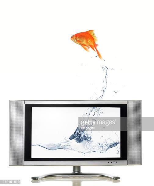 escaping - goldfish leap stock pictures, royalty-free photos & images