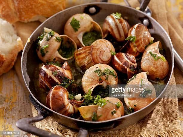escargot - snail stock photos and pictures