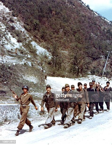 Escorted by a pair of American soldiers a group of German prisoners of war walk along a road Italy 1944
