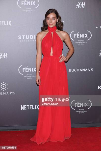 Esmeralda Pimentel attends the Premio Iberoamericano De Cine Fenix 2017 at Teatro de La Ciudad on December 6 2017 in Mexico City Mexico