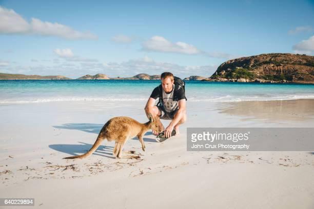 Esperance Kangaroo and tourist