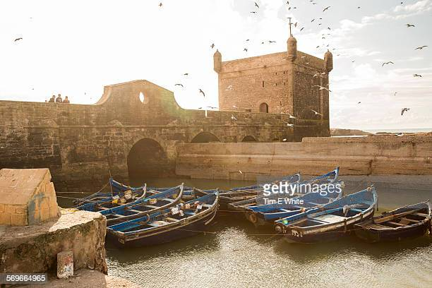 Essaouira Fishing Harbour, Morocco