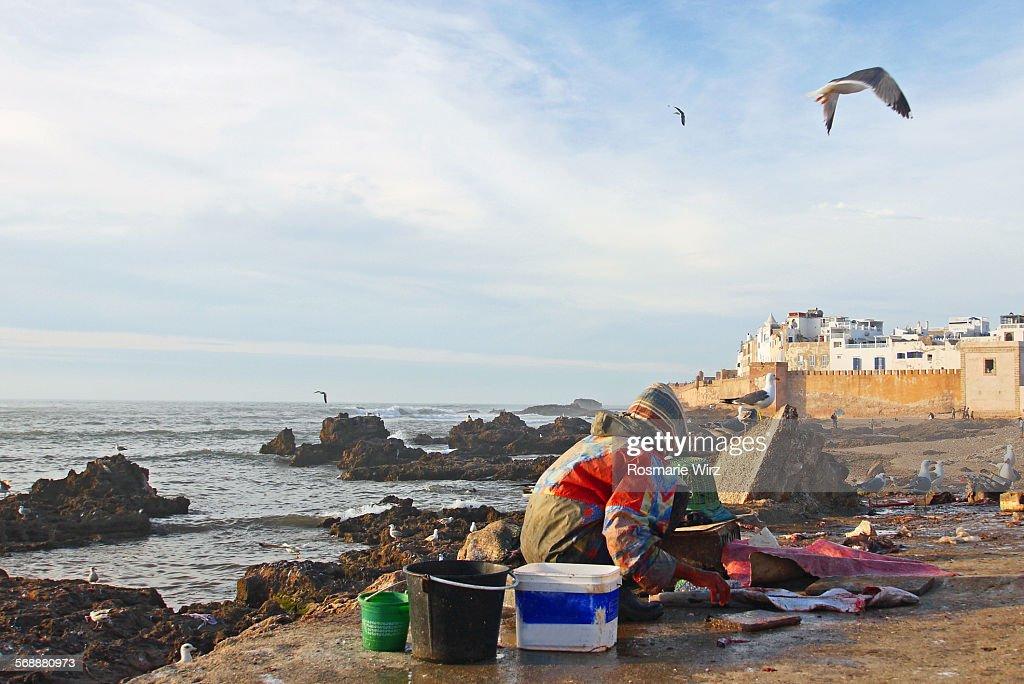 Essaouira harbour area : Stock Photo