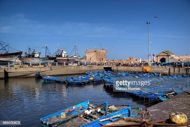 Essaouira historic port full of blue boats