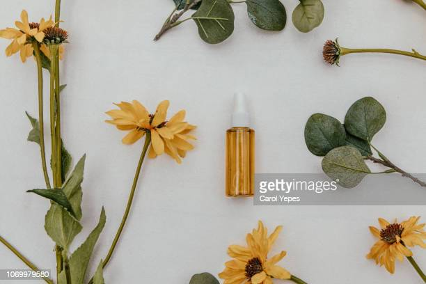 essential oils and medical flowers herbs - herb stock pictures, royalty-free photos & images