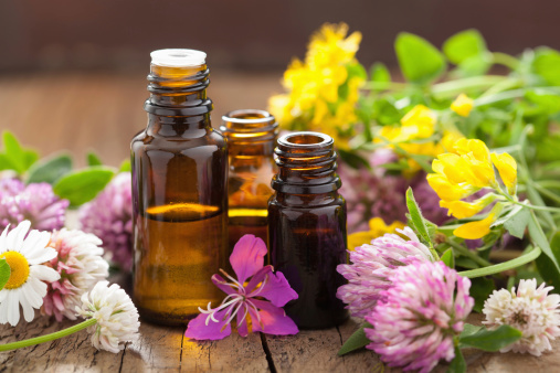 essential oils and medical flowers herbs 502931693