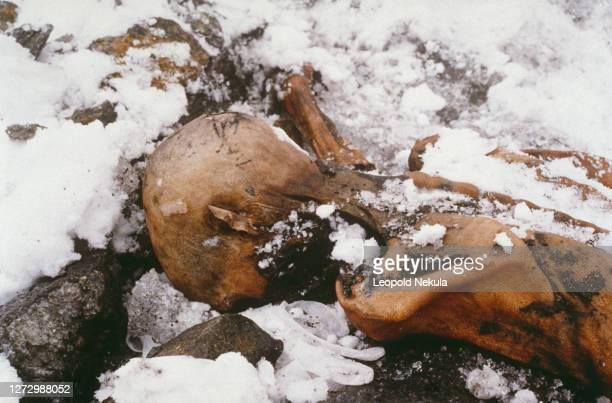 Est à 3200 mètres d'altitude que des randonneurs ont trouvé par hasard un corps momifié, sur un glacier du Similaun dans les Alpes de l'Otzal en...