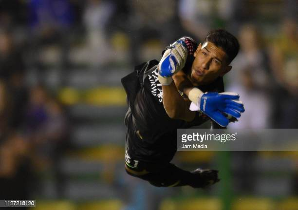 Esteban Andrada of Boca Juniors jumps to make a save during a match between Defensa y Justicia and Boca Juniors as part of Superliga 2018/19 at...