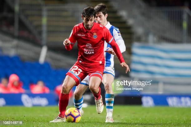 Esteban Granero of Espanyol Aritz Elustondo of Real Sociedad during the La Liga Santander match between Real Sociedad v Espanyol at the Estadio...
