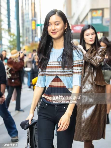 Estelle Chen is seen on November 08 2018 in New York City