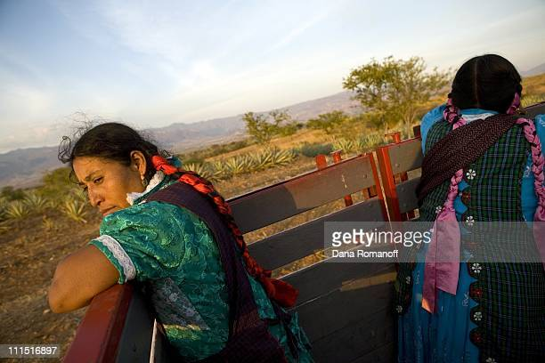 Ester Cruz Cruz and her cousin Juliana return from working in the fields on February 16, 2008 near the city of Tlacolula. Ester's five brothers live...