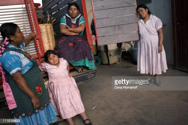 Ester Cruz Cruz her cousin Juliana sister Naomi and neice Ana return from working in the fields on February 16 2008 near the city of Tlacolula...