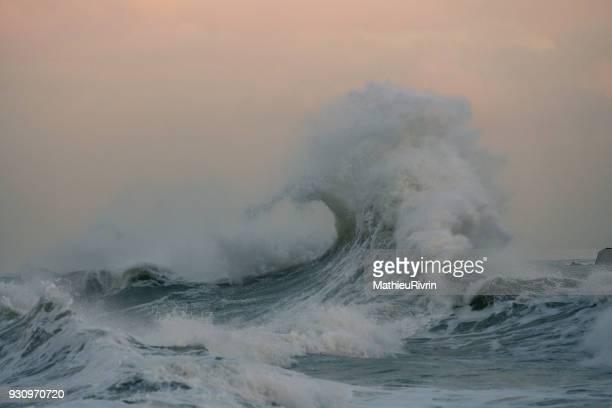 esthétisme de vague - orkan stock-fotos und bilder