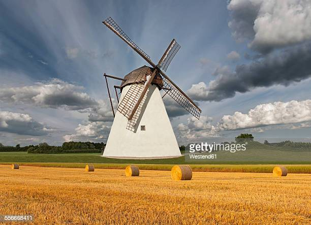 estonia, seidla, windmill at stubble field - old windmill stock photos and pictures