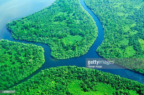 Estuary with delta and tropical vegetation, aerial view, Nicaragua, Central America