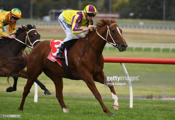 Ethan Brown riding Maddison Avenue winning Race 5 during Melbourne Racing at Sandown Hillside on April 10 2019 in Melbourne Australia