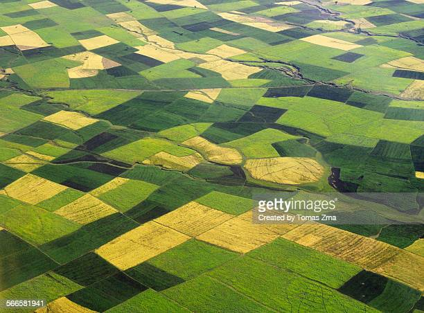 Ethioian fields after rainy season