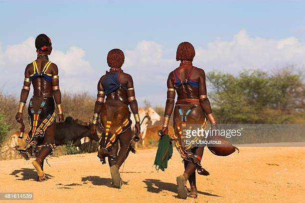 Ethiopia Lower Omo Valley Tumi Hama Jumping of the Bulls initiation ceremony the initiate contemplates the ceremony where he will be required to...