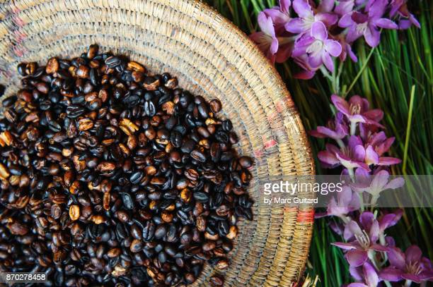 Ethiopian Coffee Beans, Gondar, Ethiopia
