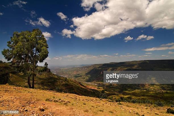 Ethiopian Landscape, Canyon of Debre Libanos