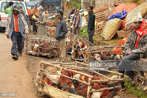 Ethiopian street vendors sell chickens and roosters during the preparations of new year at a local livestock market in Addis Ababa Ethiopia on...