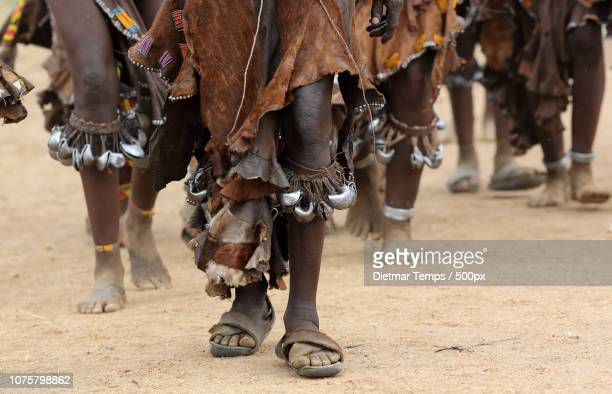 ethiopian tribes, hamer women - dietmar temps stock photos and pictures